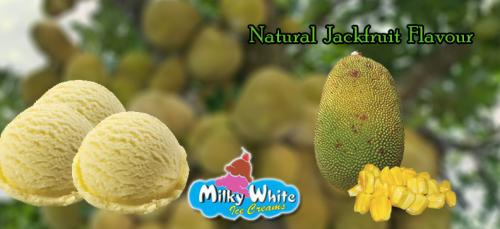 jackfruit_scoop_natural_icecream_kerala